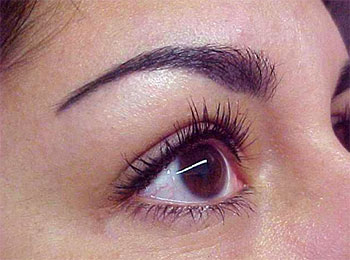 Permanent makeup cosmetic tattooing permanent eyeliner for Eyebrow tattoo images