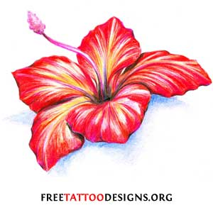The Hibiscus is also a popular tattoo flower. It is a tropical flower ...