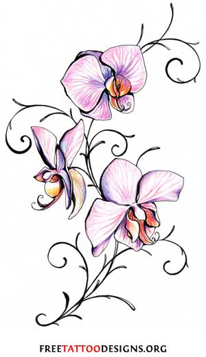 Other flowers that are often used for tattoos are: