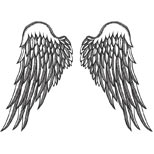 Angel wings design