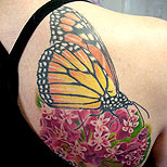 Big butterfly tattoo on a woman's shoulder