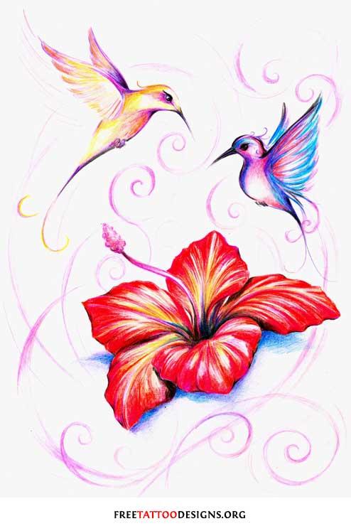 kolibry