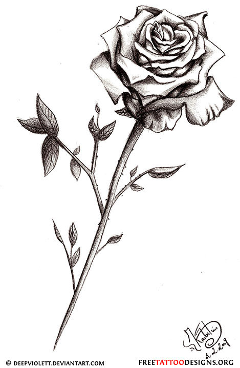 Gallery For gt Single Rose Tattoo Design