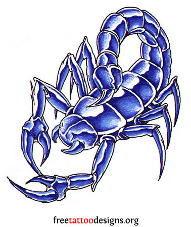 http://www.freetattoodesigns.org/images/tattoo-gallery/blue-scorpion-tattoo.jpg