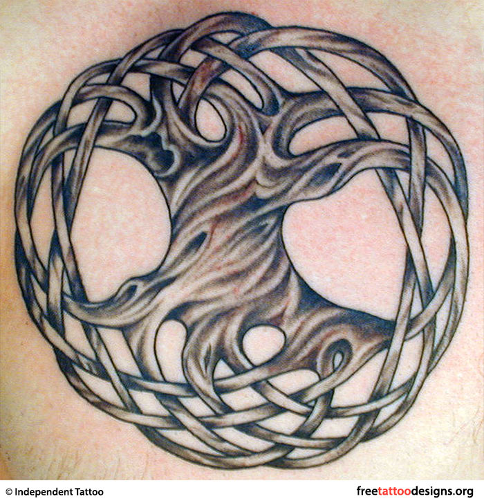 Palm, Tree Of Life, Pine Tree Tattoo