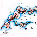 Cherry blossom tattoo flash