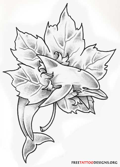Dolphin Tattoo Drawings