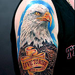 Harley Davidson eagle tattoo on a man's arm: Live to Ride