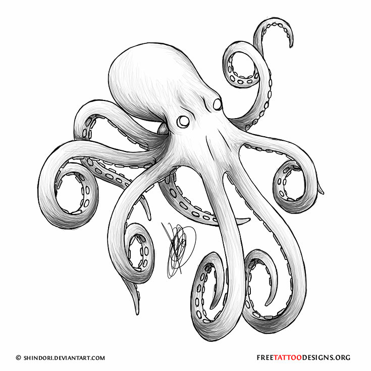Octopus Tattoo Designs & Meaning