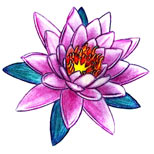 Purple lotus tattoo design