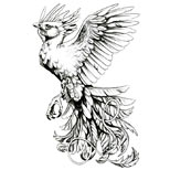 Phoenix tattoo design with the word Reborn