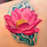 Pink lotus tattoo in water