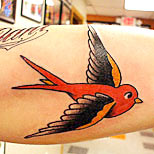 Red swallow tatoo on a man's arm