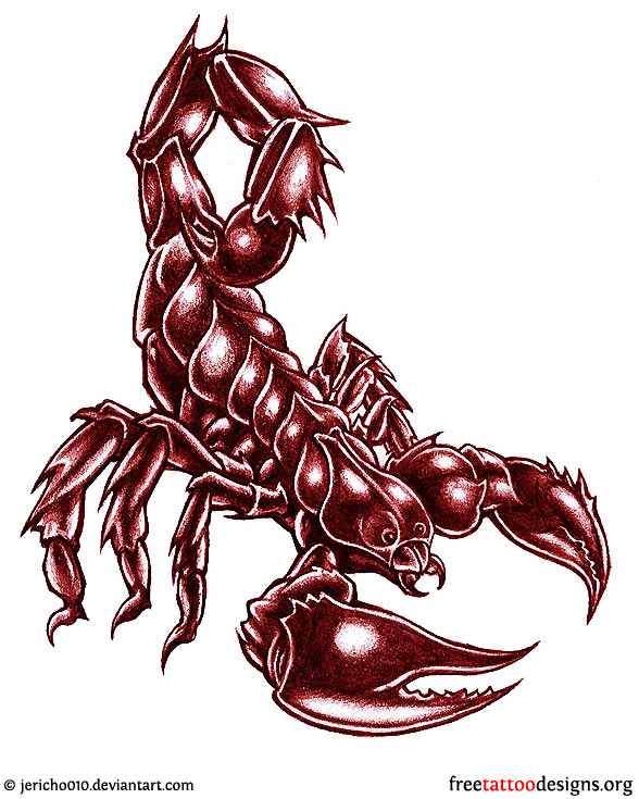 http://www.freetattoodesigns.org/images/tattoo-gallery/scorpion-tattoo-design-6.jpg