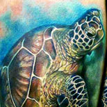 Tattoo of a sea turtle