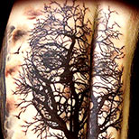 Skull in tree tattoo