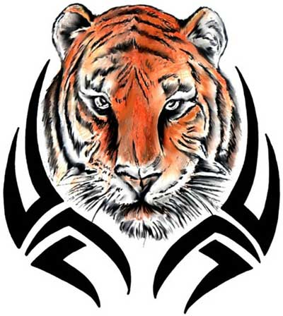 Tribal Tiger Tattoos