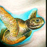 Sea turtle tattoo
